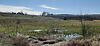 Земля сельскохозяйственного назначения в селе Годилов, площадь 40 соток фото 5