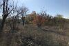 Земля сельскохозяйственного назначения в селе Новоалександровка, площадь 4 Га фото 2