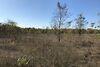 Земля сельскохозяйственного назначения в селе Новоалександровка, площадь 4 Га фото 3