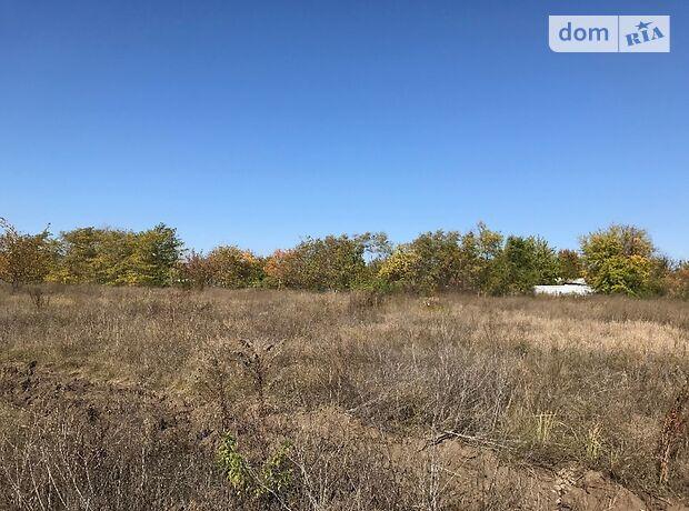 Земля сельскохозяйственного назначения в селе Новоалександровка, площадь 4 Га фото 1