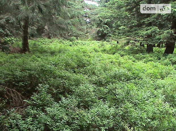 Земельный участок сельскохозяйственного назначения в Драгобрате, площадь 12 соток фото 1