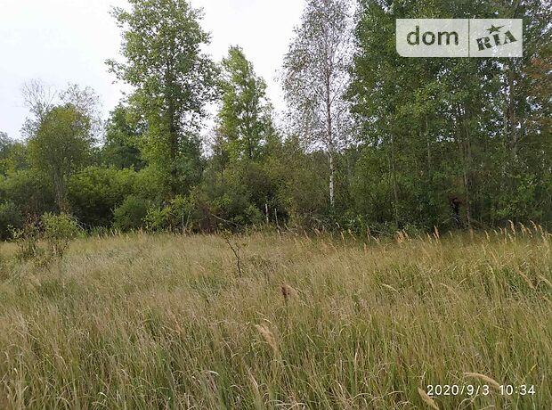 Земля сельскохозяйственного назначения в селе Андреевка, площадь 2 Га фото 1