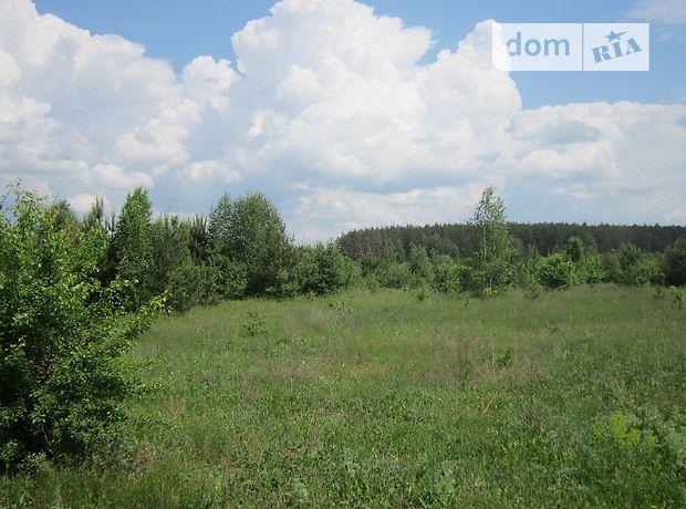 Продаж землі сільськогосподарського призначення, Чернігівська, Городня, c.Пекурівка