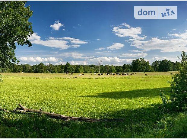 Земля сільськогосподарського призначення в селі Бабаї, площа 2 Га фото 1