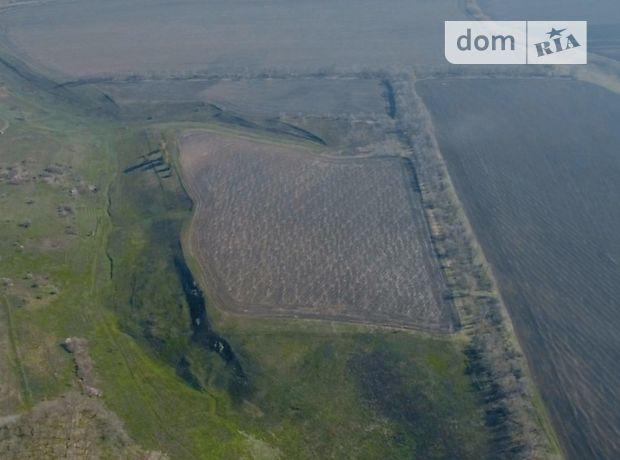 Земля сільськогосподарського призначення в селі Мерефа, площа 30 Га фото 1