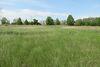 Земля сельскохозяйственного назначения в селе Пивденное, площадь 10 соток фото 8