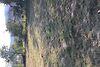 Земля сельскохозяйственного назначения в селе Велятино, площадь 19 соток фото 4
