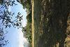 Земля сельскохозяйственного назначения в селе Велятино, площадь 19 соток фото 5