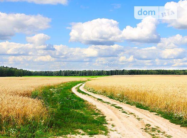 Продажа земли сельскохозяйственного назначения, Черниговская, Ичня, c.Бережовка
