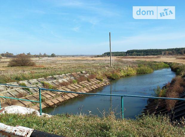 Земля сельскохозяйственного назначения в селе Димарка, площадь 290 соток фото 1