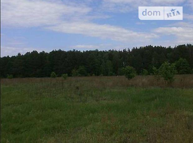 Земельный участок сельскохозяйственного назначения в Житомире, площадь 10 соток фото 1
