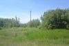 Земля сільськогосподарського призначення в селі Уляники, площа 50 соток фото 1