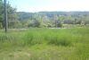 Земля сільськогосподарського призначення в селі Уляники, площа 50 соток фото 3