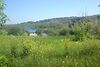 Земля сільськогосподарського призначення в селі Уляники, площа 50 соток фото 4