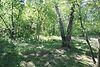 Земля сельскохозяйственного назначения в Киеве, район Святошино, площадь 5 соток фото 7