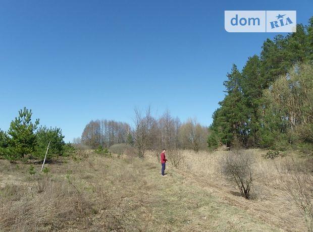 Продажа земли сельскохозяйственного назначения, Киев