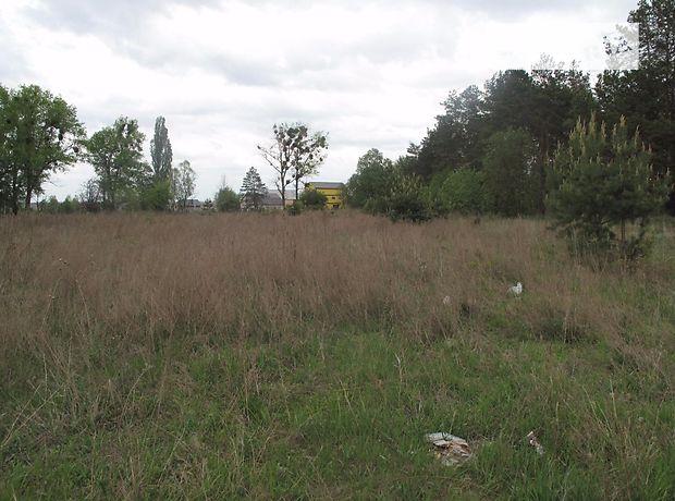 Продаж землі сільськогосподарського призначення, Київська, Києво-Святошинський, c.Бобриця