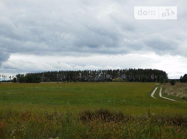 Продажа земли сельскохозяйственного назначения, Киевская, Киево-Святошинский, c.Бузовая