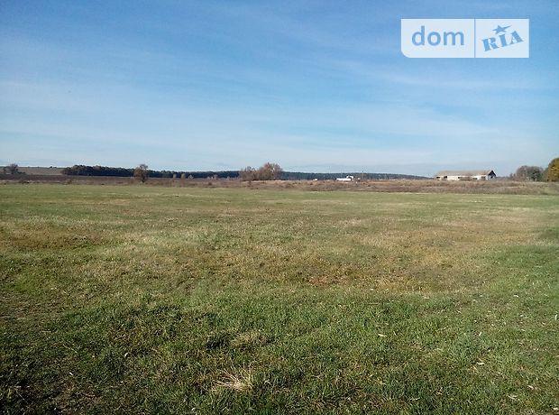 Земля сельскохозяйственного назначения в селе Княжичи, площадь 173 сотки фото 1