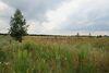 Земля сельскохозяйственного назначения в селе Софиевская Борщаговка, площадь 9 соток фото 7