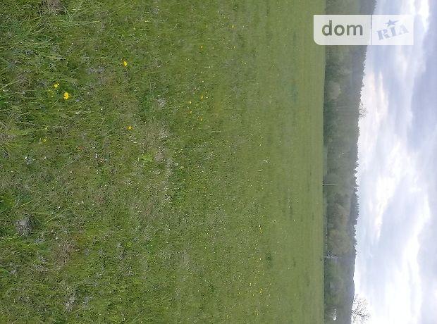 Земля сельскохозяйственного назначения в селе Средний Березов, площадь 20 соток фото 2