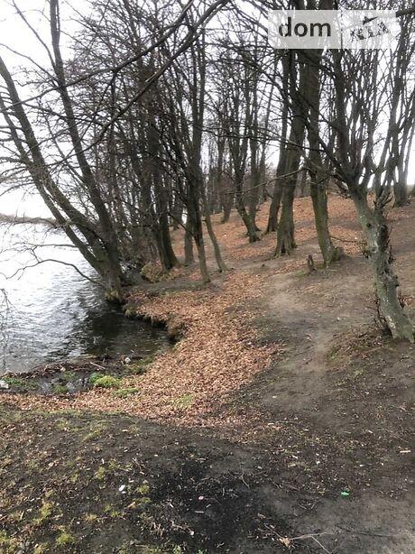Земля сільськогосподарського призначення в селі Головчинці, площа 55 соток фото 1
