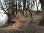 Земля сільськогосподарського призначення в селі Головчинці, площа 55 соток фото 2
