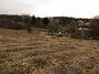 Земля сільськогосподарського призначення в селі Головчинці, площа 55 соток фото 3