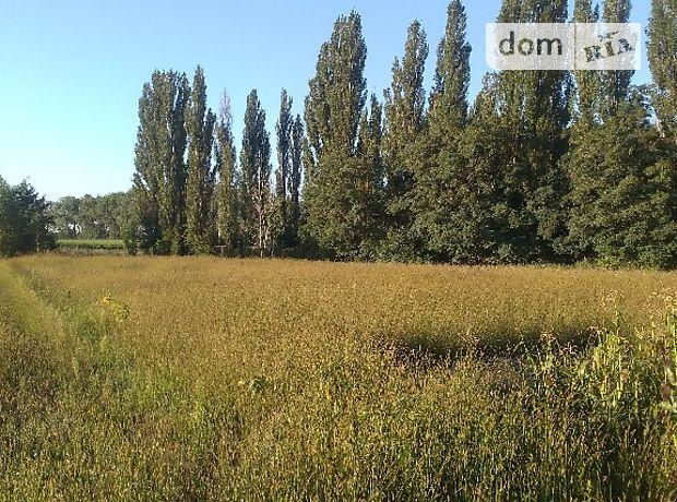 Продажа земли сельскохозяйственного назначения, Киевская, Макаров, c.Копылов, Шевченка 1 г