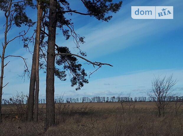 Земля сельскохозяйственного назначения в селе Липовка, площадь 1 Га фото 1
