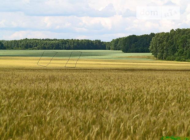 Продажа земли сельскохозяйственного назначения, Киевская, Макаров, c.Липовка
