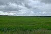 Земля сільськогосподарського призначення в селі Ясногородка, площа 205 соток фото 1