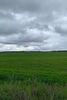 Земля сільськогосподарського призначення в селі Ясногородка, площа 205 соток фото 2