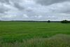Земля сільськогосподарського призначення в селі Ясногородка, площа 205 соток фото 3