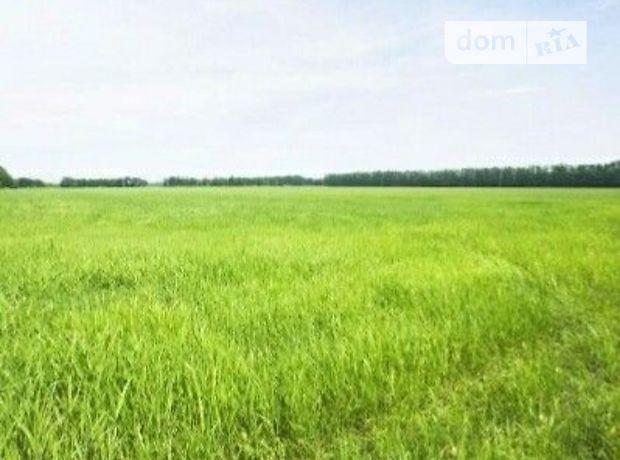 Земля сельскохозяйственного назначения в Марковке, район Марковка, площадь 2400 соток фото 1