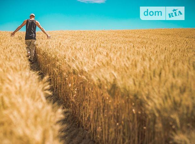 Земельна ділянка сільськогосподарського призначення в Міловому, площа 7.16 Га фото 2