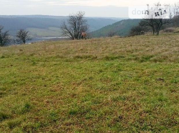 Земля сельскохозяйственного назначения в селе Петриманы, площадь 90 соток фото 2