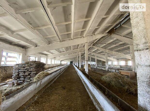 Земля сельскохозяйственного назначения в селе Воробеевка, площадь 6 Га фото 1