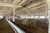 Земля сельскохозяйственного назначения в селе Воробеевка, площадь 6 Га фото 3