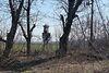Земля сельскохозяйственного назначения в селе Воробеевка, площадь 6 Га фото 6