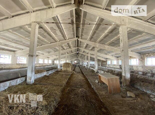 Земля сільськогосподарського призначення в селі Воробіївка, площа 12 Га фото 1
