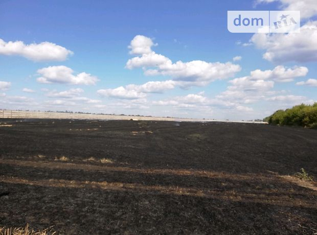 Земля сельскохозяйственного назначения в селе Кулебовка, площадь 3 Га фото 1