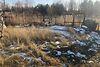 Земля сільськогосподарського призначення в селі Сокільники, площа 17 соток фото 7