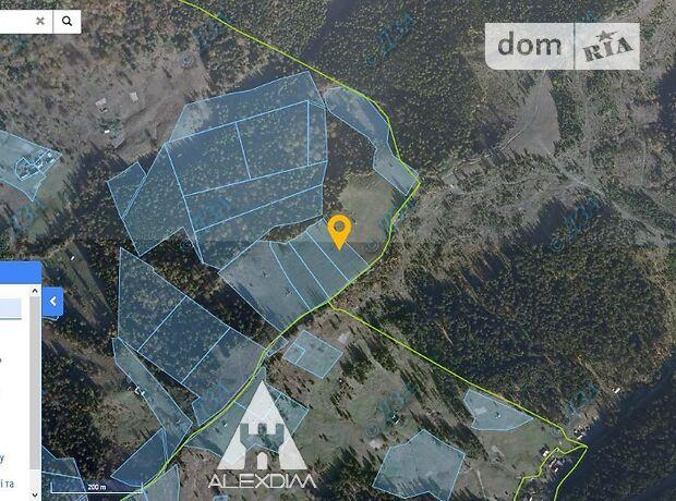 Земля сельскохозяйственного назначения в селе Ясиня, площадь 76 соток фото 1