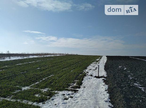 Земля сельскохозяйственного назначения в селе Городище, площадь 24 сотки фото 1