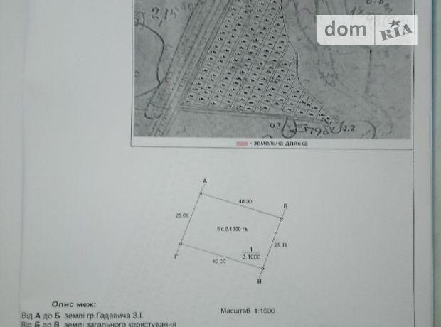Земля сельскохозяйственного назначения в Сарнах, район Сарны, площадь 10 соток фото 2