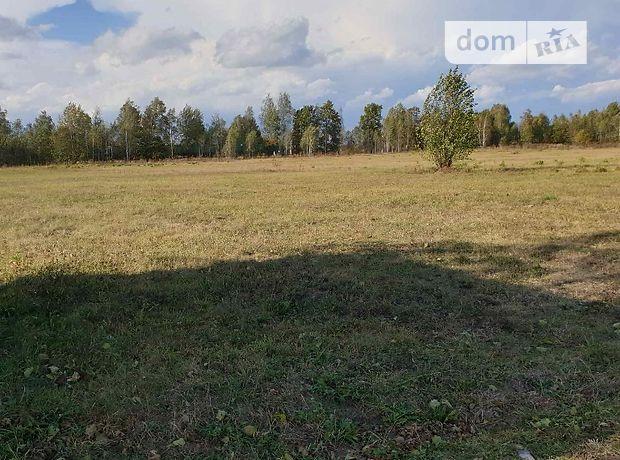 Земля сельскохозяйственного назначения в селе Михайлючка, площадь 6 Га фото 2