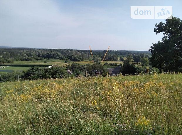 Земля сельскохозяйственного назначения в селе Зелёный Гай, площадь 2 Га фото 1