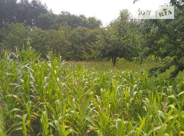 Земля сельскохозяйственного назначения в селе Нагорное, площадь 31 сотка фото 2