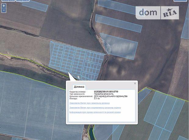 Земля сельскохозяйственного назначения в селе Грабовец, площадь 10 соток фото 1